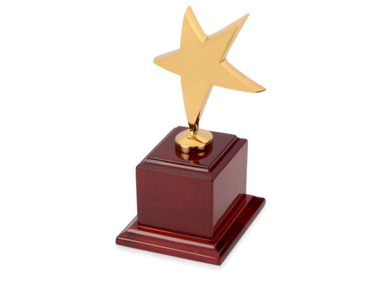 Награда «Звезда» арт. 508015_a