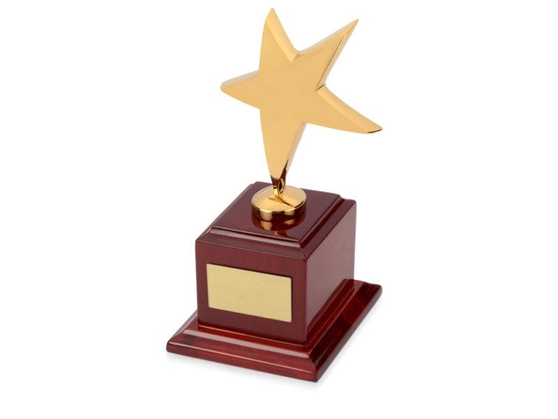 Награда «Звезда» арт. 508015_b