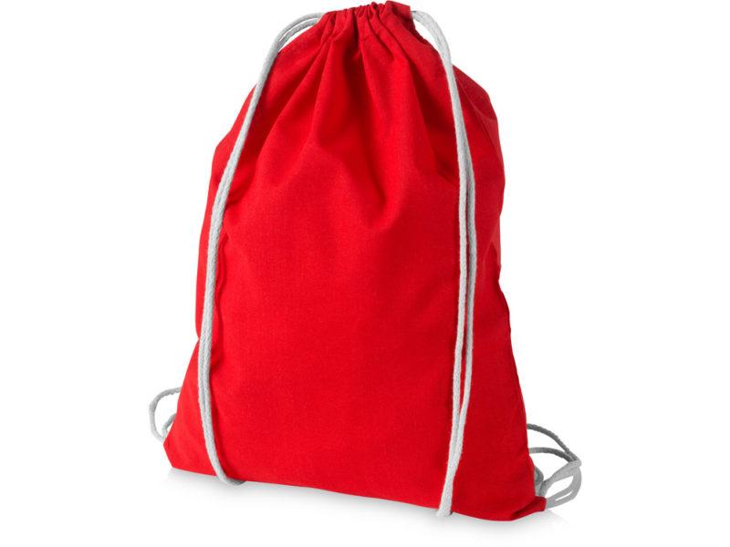 Рюкзак арт. 12011304